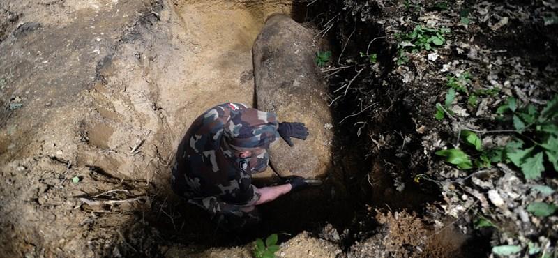 Óriási légibombát rejtett a föld a Kamaraerdőben – fotó