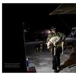 A kutyaszánhajtó plébánosról szóló fotóriportért jár idén a Hemző-díj