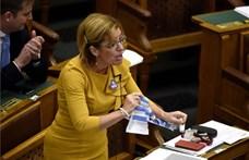 Az MSZP-s Bangóné szerint azért népszerű a Fidesz, mert sok a patkány