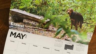 Megjelent a 2021-es kakáló kutyás naptár