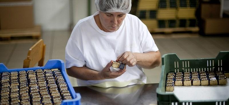 LMP+MSZOSZ: az új Munka törvénykönyvével kevesebb lesz a munkahely is