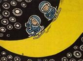 Ezt láthatták a magyarok a holdra szállásból - képgaléria