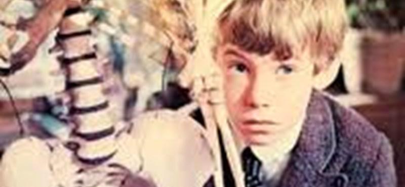 Mi lett a Pál utcai fiúk gyerekszereplőivel negyven év után?
