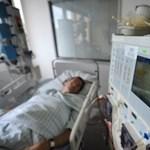 Tizennégy halott és 1400 a gyanús eset a német hasmenésjárvány miatt