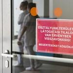 H1N1-fertőzésbe halt bele egy beteg Sátoraljaújhelyen