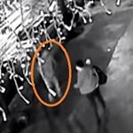 """""""Felporszívózták"""" a Teréz körutat, papír zsebkendő is lehet bizonyíték a robbantó ellen"""