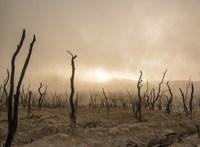 Kompromisszummal ért véget a madridi klímacsúcs