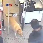 Képtelenség haragudni az ország legaranyosabb bolti tolvajára – videó