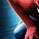 Meghalt a Pókember társalkotója, Steve Ditko