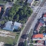 Mégis ki kell vágni a Szentendrei úti fákat