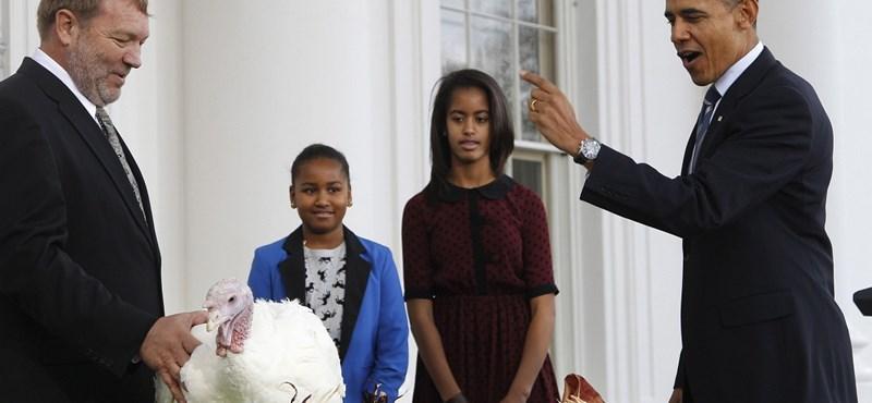 A nap képei: Obama megkegyelmezett két pulykának