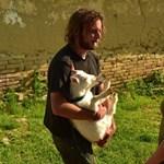 Düledező magyar tanyán kezdett új életet egy brit pár, alig ismertek rájuk – videó