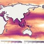 Jobb lenne megelőzni: 2050-re több hulladék lehet az óceánokban, mint hal