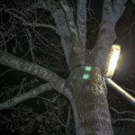A villanyszámlák csökkenését ígérte az Elios az önkormányzatoknak, de csalódniuk kellett