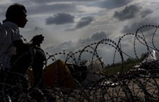 43 illegális bevándorló szabadult ki egy hűtőkamionból Bécs mellett