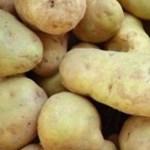 9 tonna veszélyes krumplira csapott le a Nébih