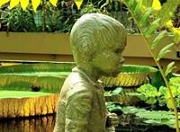 Medence vizébe került Nemecsek Ernő szobra a Füvészkertben