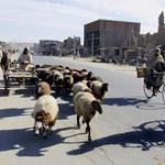 Elraboltak egy amerikai és egy ausztrál professzort Kabulban