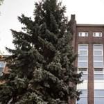 RTL: Megfertőzte kollégáit két nővér, akik szájmaszk nélkül dolgoztak a Bajcsy kórházban