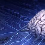 A jövő jelszavai - az agyunk lesz a jelszó