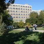 Több mint háromezer gólya kezd a győri egyetemen