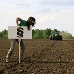 Kishantos miatt borul a bili: a bíróság szerint jogellenes a Nemzeti Földalap működése