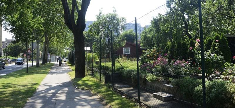 Élet a bécsi kiskerttelepen: paradicsom vagy túlszabályzott hóbort?