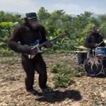 Videó: Őserdei majmokká változtak a Coldplay tagjai