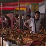 Hiába a rengeteg tiltakozás, idén is megrendezik a felháborító kínai fesztivált