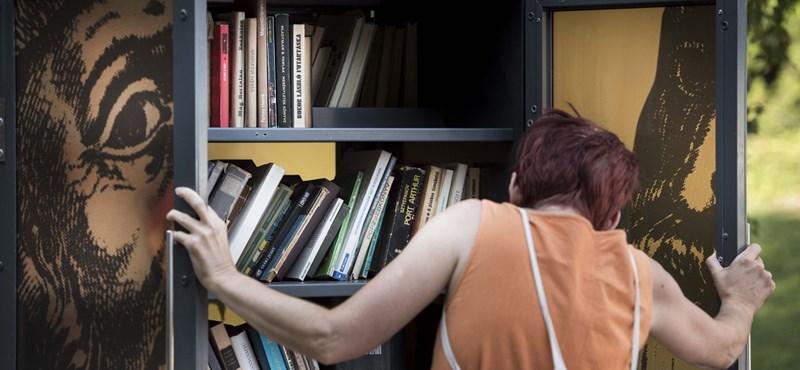Tényleg működik a villámolvasás? Kipróbáltuk