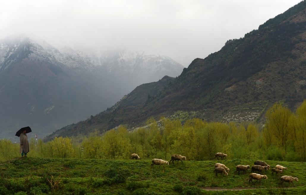 afp. nagyításhoz - esernyő - eső, időjárás, zivatar, vihar, India, Srinagarban, 2013.04.03.