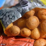 Akciós zöldséget árul a Fidesz Tiszaújvárosban, ahol a jövő hétvégén választás lesz