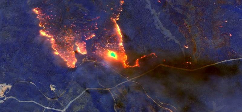Műholdképek: 11 000+ kilométerrel odébb is megérzik, hogy Ausztráliában tombol a tűz