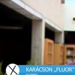 Fluor Tomi a külföldön élőket is szavazásra buzdítja az új videóban