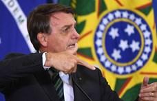 Bolsonaro vállalta, hogy 2030-ig véget vet az illegális amazóniai fakitermelésnek