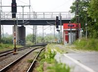 Égő, sínre dőlt fának hajtott egy német intercity vonat