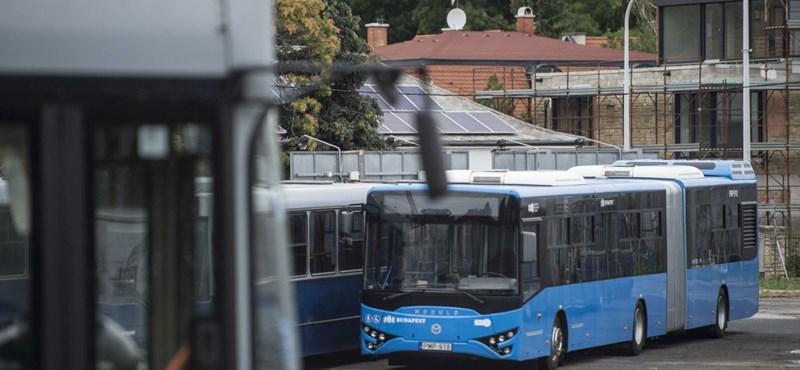 Felszámolják a buszt (időre) gyártani nem képes Ikarus Egyedit, amely a naptárat sem ismeri