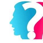 Válaszolt a dékán a genderszak betiltására: semmilyen kritika nem jött szakmai alapon