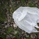Elege van a műanyagokból? Tartsa be ezt a néhány pontot, hálás lesz érte a környezete