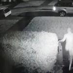 Videó: meztelenül rohant ki a házból egy férfi, csak hogy elkapja az autótolvajt