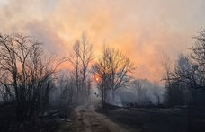 Ég az erdő az egykori csernobili atomerőmű körül