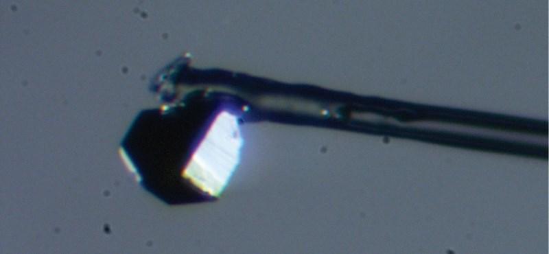 Olyan ásványt találtak egy gyémántban, amilyet még soha nem láttak a geológusok