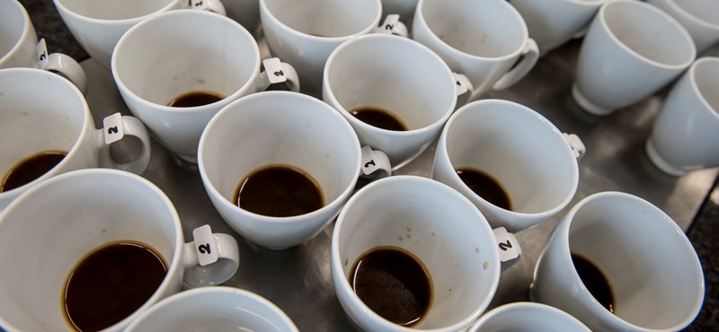 """Do you find your favorite coffee expensive? Find Climate Change! """"Width ="""" 800 """"height ="""" 370"""