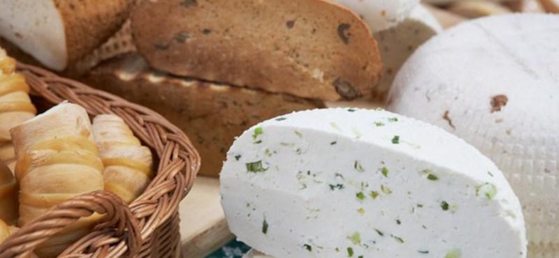 Óriás sajt kicsiknek
