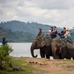 Végre leszálltak az elefántokról Vietnamban