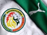 Szenegál bejutott az Afrika Kupa döntőjébe