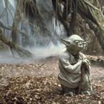 Van szabad másfél órája? Relaxáljon Yoda bolygóján!