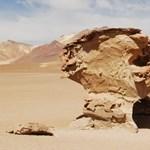Dali látomásai elevendnek meg Bolíviában (csodás képek)