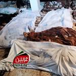 Eközben a Lajtán túl: szíriai gáztámadás, impotens Obama