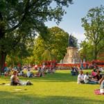 Egészségügyi megelőzés és spórolás: ezért se vágassa ki egy város a fáit